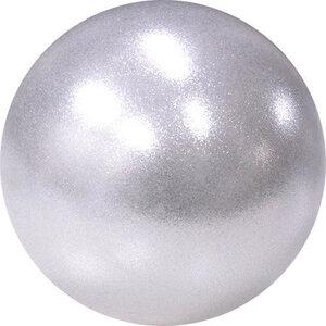 Glitter High Vision Pastorelli 16 cm 320 gr SILVER HV